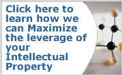 Learn How We Can Maximize Your Intellectual Property